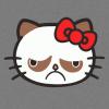 Hello grumpy cat