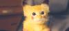 olesya_pikachu userpic