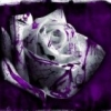 gothicangel999 userpic