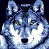 darkwolf143 userpic