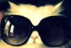 kassandra_dream userpic