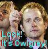 owlgrey