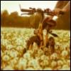 flykarjala userpic