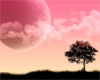 ___silentxseas userpic