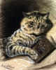 chasing the soul: catreadingwain
