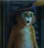 кот в сапогах в ахуе