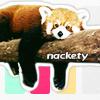 nackety panda