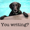 Are 6 dogs too many?: lab writing