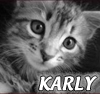 karlysemper userpic