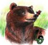 ladybug_grizzly userpic