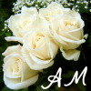 Anne Marie: Rodney