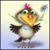 normal_crow userpic