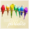 natchris: Birds of Paradise