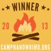 CampWinner2013