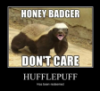 Hufflepuff, redemption, Honey Badger