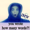 you wrote how many words?