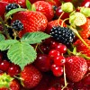 ripe_berry