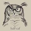 Vaysh Swiftstorm: owl on halfcaf