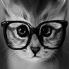 (sтocқ) Kitty 3