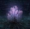 tree of life, avatar