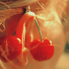 [stock] - cherries