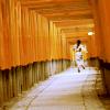 {memoirs of a geisha} ☆ run