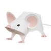 Мышенька