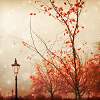 chiara: image: fall