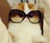 Mel (Pandahugs)