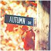 venetian_autumn