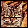 Tam 'O Bedlam [userpic]