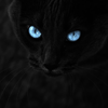 neotyan userpic