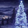 Christmas: Tree (Blue)