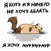 ленивое кошко