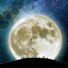 moon look at the moon!