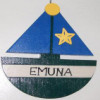 emunaendeavor userpic
