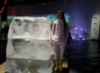 Елена во льдах