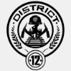 [hunger games] district 12