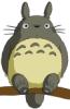 gotasha_ng userpic