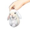 chubbyichigo userpic