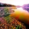 (Stock) Scenery water
