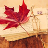 fall - leaf and letters