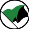 Чёрно-зелёный флаг