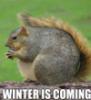 Зима идет