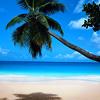 high_striker: Nature (Blue Beach)