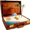 7otya7: чемодан