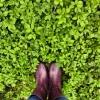 зелёный, трава, фиолетовый, сапоги