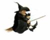 ведьма на помеле