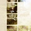 salt and burn _ spn;tv