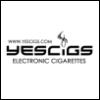 e cigarettes, electronic cigarette